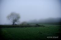 ☆ 霧の朝 ☆ - Trimming