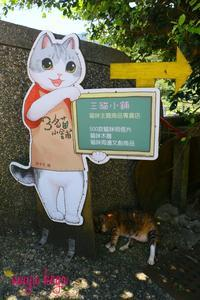 台湾の猫村は昔は・・・ - ねこ旅また旅