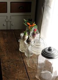 早春の花 - 暮らしを紡ぐ