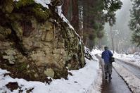 板井原集落の冬景色 - 写真の散歩道