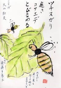 ミツバチ「ツチスガリ」 - ムッチャンの絵手紙日記