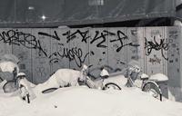 雪に呑み込まれるもの - 金色の麒麟が眺める世界