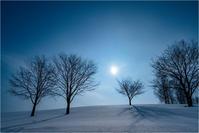 冬木立 - 光のメロディー