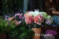 寒い日 - O's garden へ ようこそ~ ♪