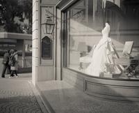 2017年1月17日ウェディングドレスを夢見る光蜥蜴(写真部門) - Silver Oblivion