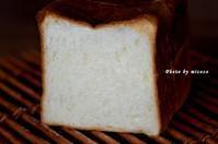 セントル角食2017-1 - 森の中でパンを楽しむ