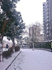 寒波! - chocoさんのつぶやきノート