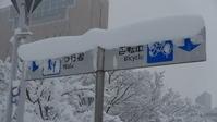雪 - Around30 アクセラとGSX-S1000を買う
