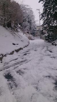 うわっ雪です ! - 信夫山文庫 日日雑記