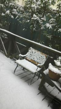 初雪⛄ - takakomamaのキルトパラダイス