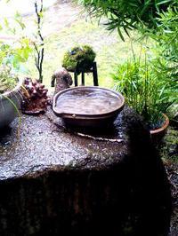 2月「美術の時間」!風見さんの「十二支陶人形」も仲間入り・・・(くらし部門) - 納屋Cafe 岡山