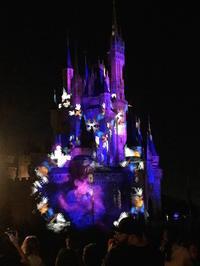 Magic Kingdom Park で Celebrate The Magic & 花火 - mayumin blog 2