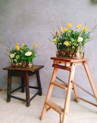 お花のレッスンに参加しました♪ - 今日も食べようキムチっ子クラブ (料理研究家 結城奈佳の韓国料理教室)