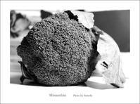 冬の花野菜 - Minnenfoto