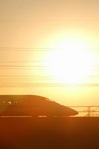 新春を迎えて~サンシャワー~ - 新幹線の写真