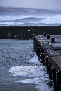 波の花 - Qualia
