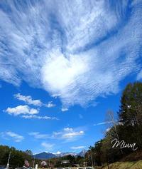 季節徒然氣の流れ - Miwaの優しく楽しく☆