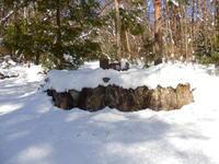 雪遊びin 豊平 - 老猿の山日記