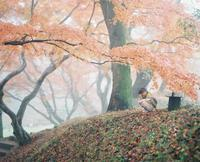 フィルムで巻き戻しの季節*(写真部門) - ココロハレ*