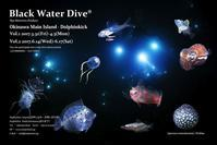 2017Black Water Dive - 沖縄 ダイビング 水中写真 フォトギャラリー