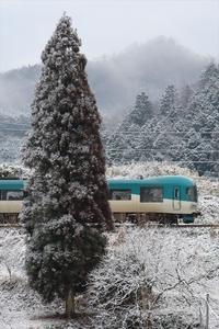 凍木 - 今日も丹後鉄道
