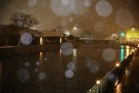 雪降る運河 - Photographs