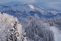 雪山 - 松之山の四季2