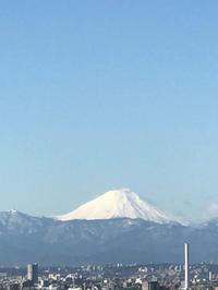 本日の富士山 - Pushpin Diary(L.J.Style Book)