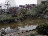 少し前、雪が降ると聞いて広島から帰ってきた。どこからどこまでが本当なのか - 京都在住フリーライターの日常