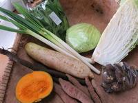 今週の野菜セット1月3週目 - まるみど農園のあれこれ日記