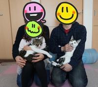 ひかり・こだまトライアル終了 - 命の応援隊   ~Life of the support team~