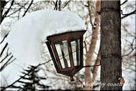 旭岳温泉の街路灯 - 北海道photo一撮り旅
