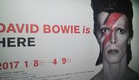 「DAVID BOWIE is|デヴィッド・ボウイ大回顧展」のおすすめの行き方@天王洲(アート・デザイン部門) - ♪♪♪yuricoz cafe♪♪♪