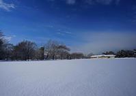 厳寒の雪景色 - お茶にしませんか