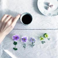花と暮らす(くらし部門) - nicottoな暮らし~うつわとおやつの物語
