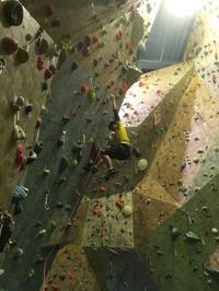 今週のインドアクライミング - ちゃおべん丸の徒然登攀日記