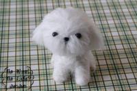 オーダー品 CORONちゃん - Wool 120%