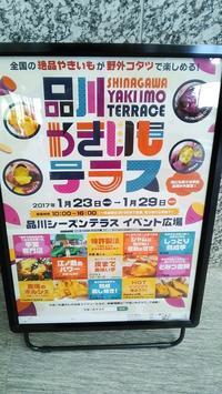 ★焼き芋三昧★ - やいやい畑