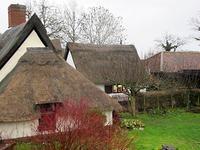 ビッグ・ガーデン・バードウォッチ - ブルーベルの森-ブログ-英国のハンドメイド陶器と雑貨の通販