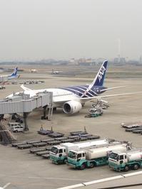 2017年1月29日のNH2176便は「鯖ジェット」久々の伊丹へ - Air Born Japan 日本の空を、楽しもう!
