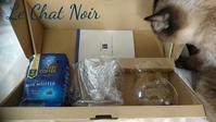 当選しました💕 - 猫が見学に…。東京大田区駅前のデコパージュ、ソスペーゾトラスパレンテ(3D)中心のクラフト教室Le Chat Noir(ル シャノワール)