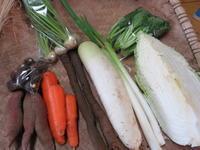 今週の野菜セット1月5週目~2月1週目 - まるみど農園のあれこれ日記