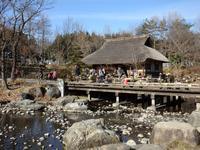 『木曽川水園お魚救出隊のネイチャーイベント風景』 - 自然風の自然風だより