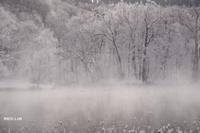 凍てつく寒い日に(写真部門) - 風道