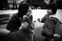 名前も知らない笑顔の君に2017#01ワンちゃん私のママをとらないで! - Yoshi-A の写真の楽しみ