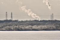 ウトナイ湖の霧氷 - やぁやぁ。