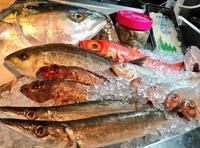 【よかうお情報】海鮮業態で、料理勉強会が行われました - Atmos back office! vol.3