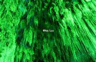 緑と青 - White Love