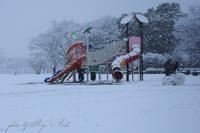 雪遊び - Ryu Aida's Photo