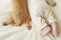 子供と犬の足(写真部門) - 家族の風景